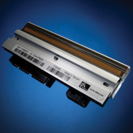 Zebra GT800 - Druckkopf - 203 dpi